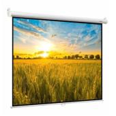 Экран 192x192см Digis Optima-B DSOB-1104 1:1 настенно-потолочный рулонный белый